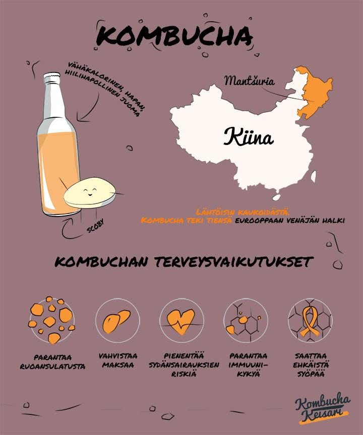 Kombucha infograafi