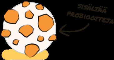 Probioottien lähde